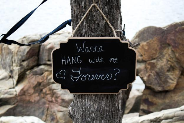close view of wanna hang with me forever on tree