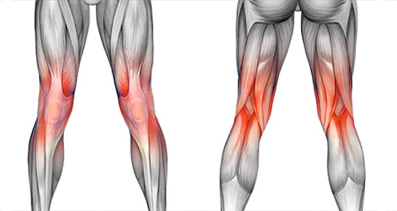 back of knee pain