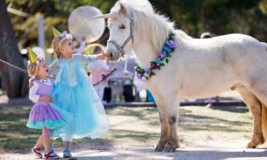 unicorns live